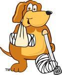 Dog First Aid Talk